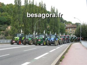 Besagora 16 oct 09 (7)